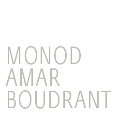 Monod Amar Boudrant - Law Firm